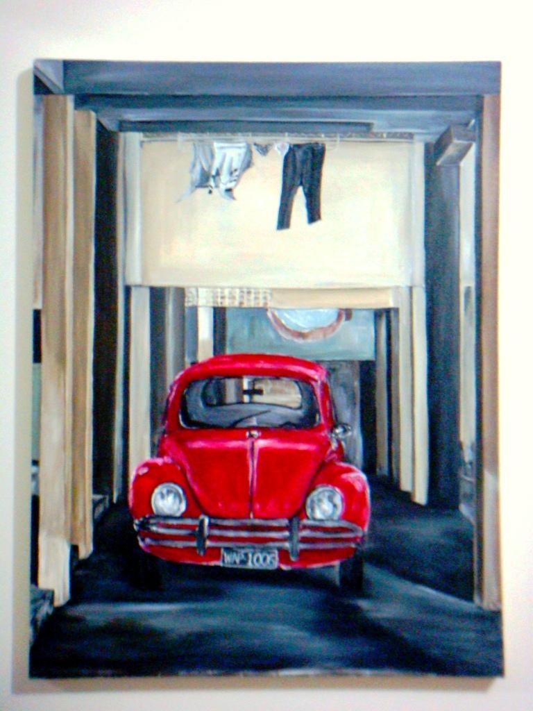 Carocha, O Fusca na garagem dos brasileiros