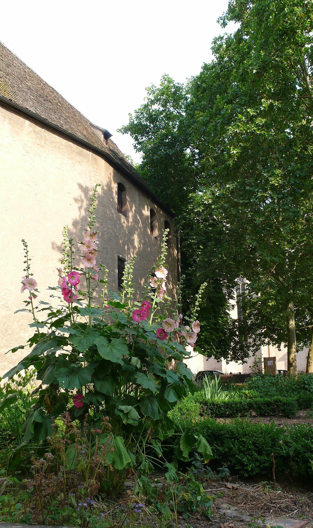 Le jardin secret catherine burg artwork celeste prize for Le jardin secret