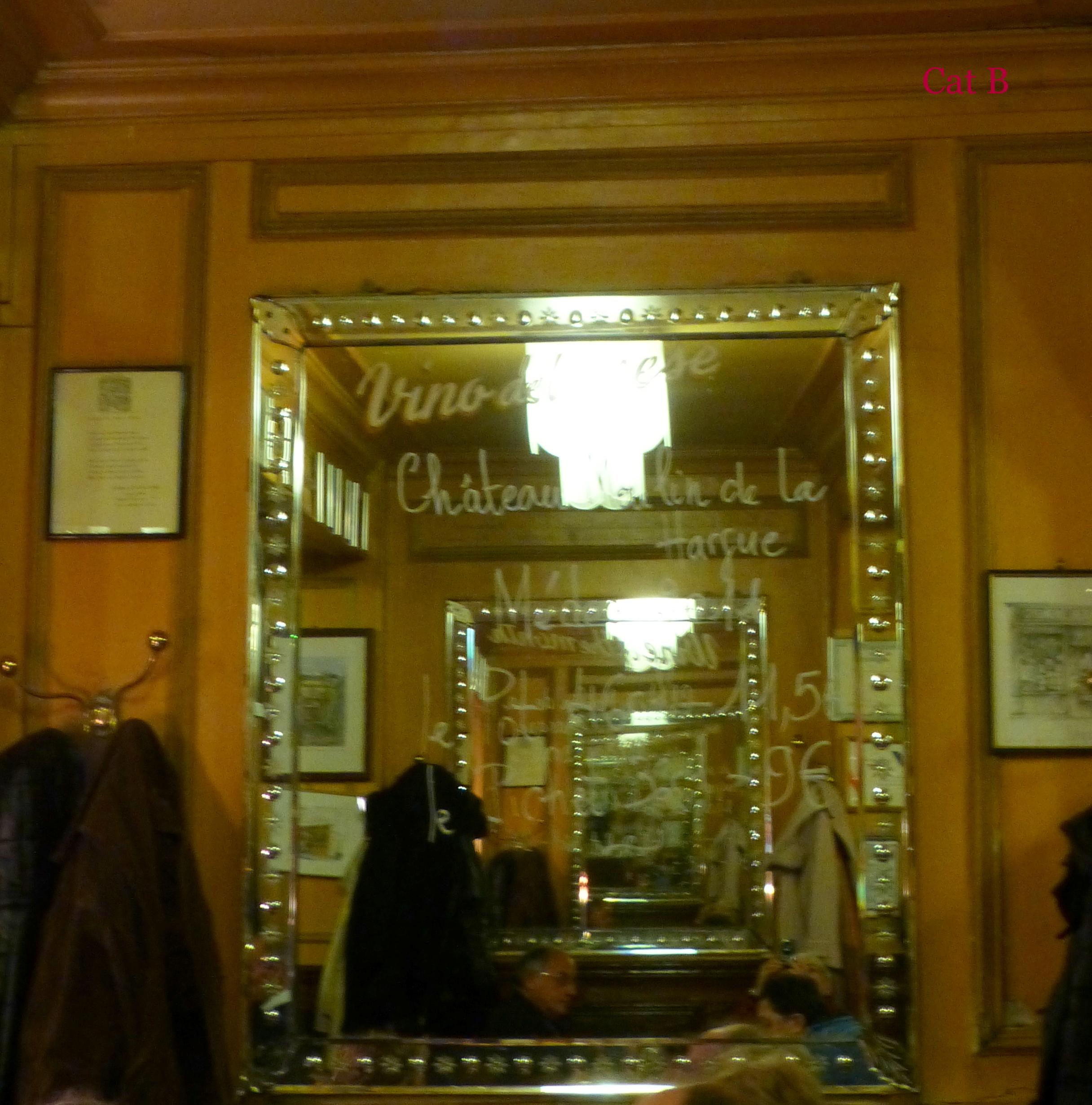 Le miroir catherine burg artwork celeste prize for Miroir paris france