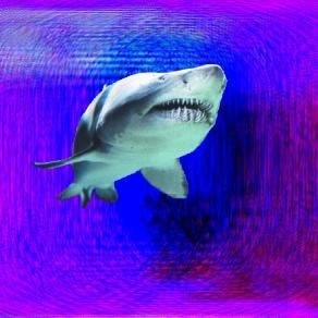 The Eye of a Sharknado