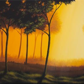 Luci nella foresta 2