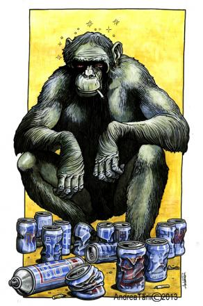 any monkey
