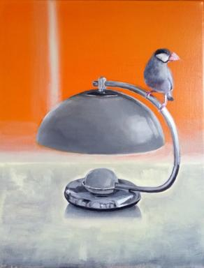 Java sparrow perched on a lampshade