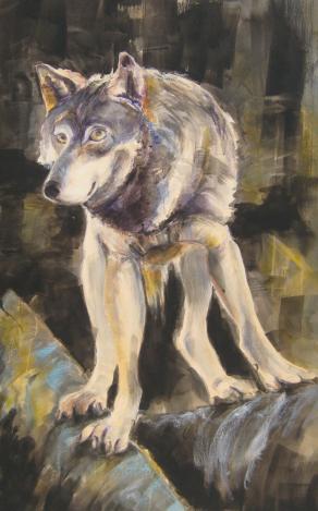 Lakota, Omega wolf