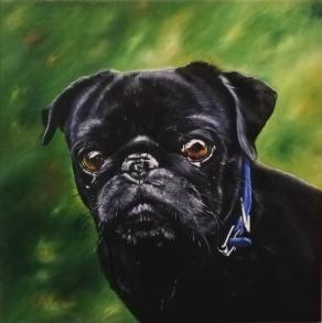 Ritratto del cane di Marco Carta -Ettore