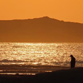 Golden meditations