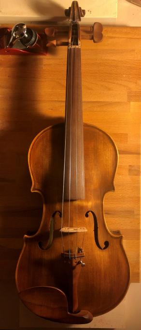 "violino n°4 ""david"""