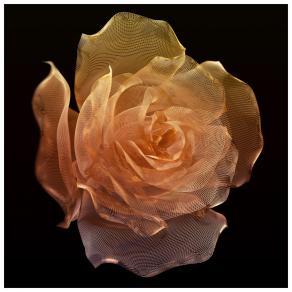 Rose Petal Knot