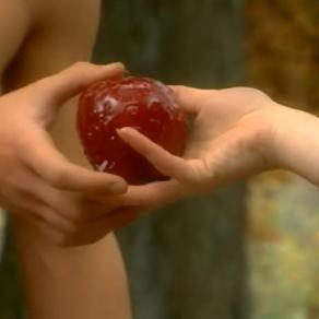 ADAM&EVE