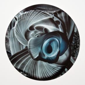 Omniscient Continuum `6; (Phi)