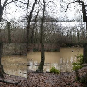 WHAT I WANT - Bidborough Pond