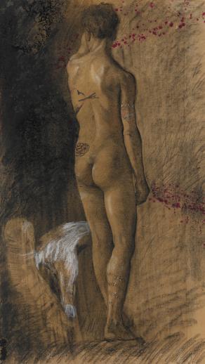 nudino maschile