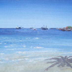 Sugar Cane Bay