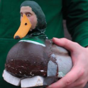 Love Ducking. Flirting with Ducks.