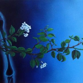 Fiori notturni / Night flowers