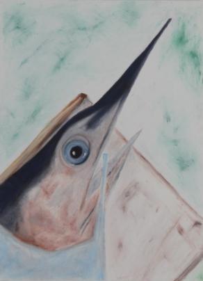pesci4