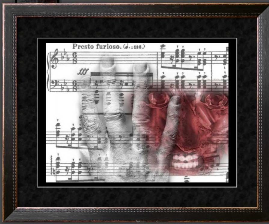 Liszt Furioso